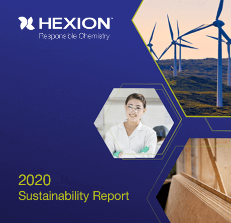 2019 Hexion Sustainability Report