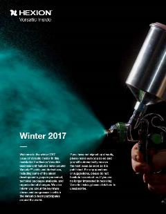 VI 2017 winter cover