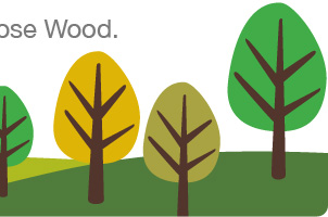 Choose Wood