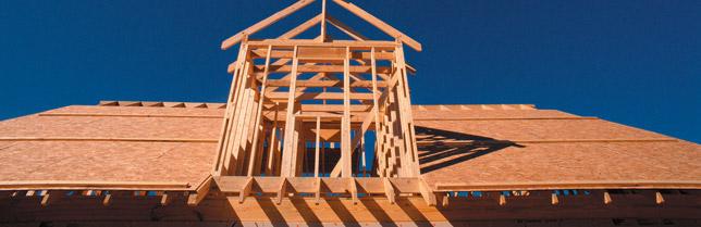 wood-composite-binders-primary