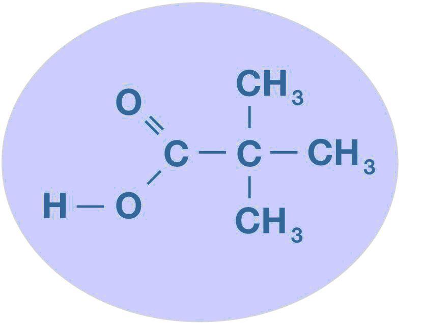 Versatic acid 5